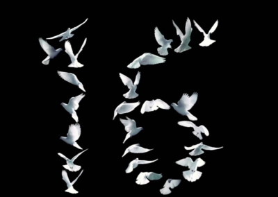 Doves- Welcoming 2016